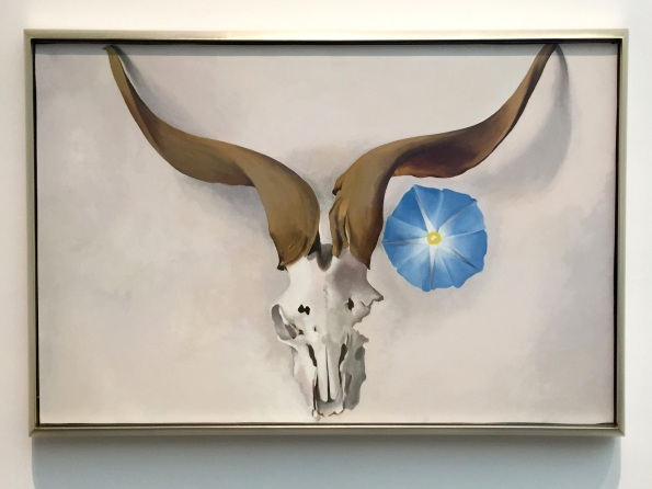 O'Keefe skull 6-2015